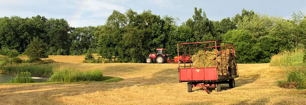 Harvesting Hay in Frankford Township