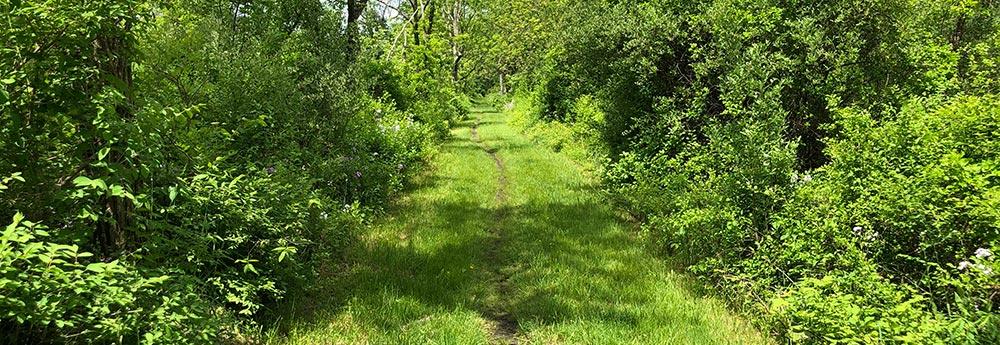 Paulinskill Trail